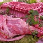 Carne di capretto