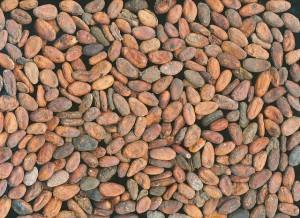 Cioccolato di Modica cacao